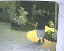 Car Larcenies Suspect from Alb. Police 061113