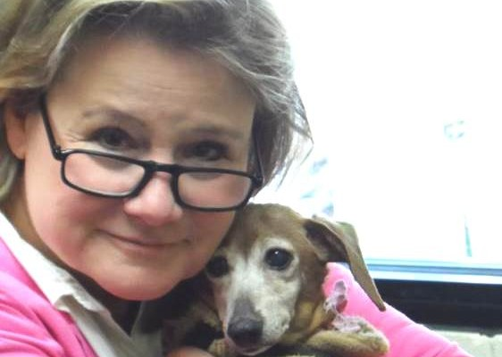 New SPCA Director Hired