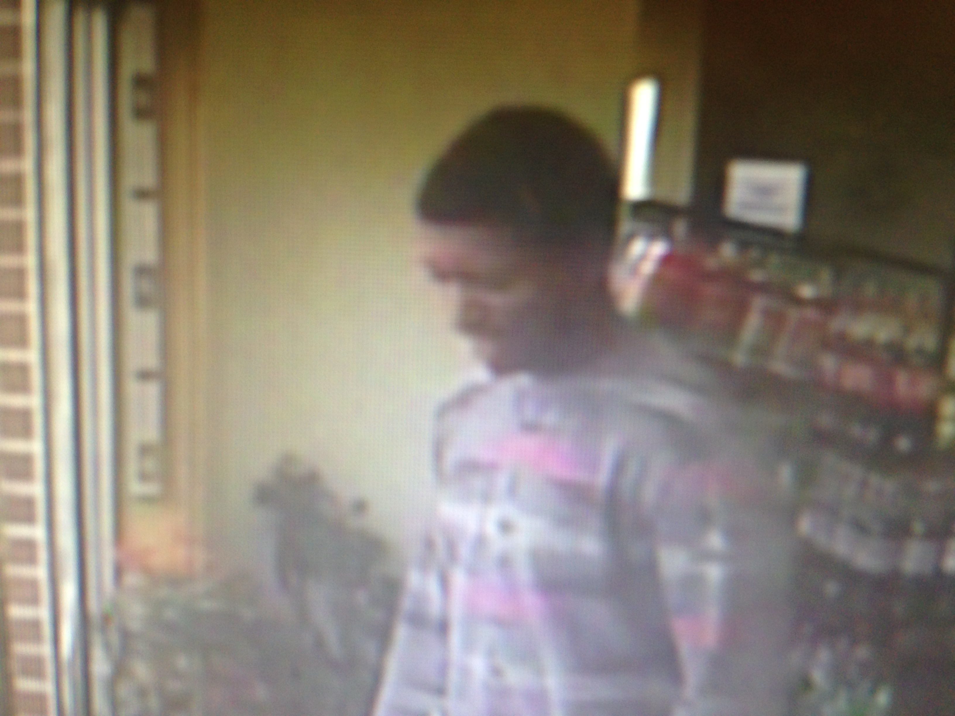 Police Ask For Public's Help Finding Larceny Suspect