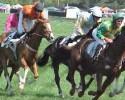 Foxfield Races Horses 042509