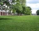 UVA Lawn 51308