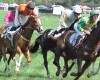 Foxfield Races Horses 042509 (RG)