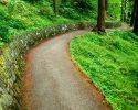 Trail (clipart)